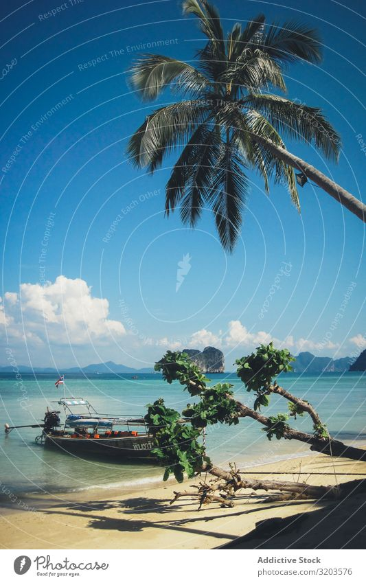 Tropical beach with palms and boat floating Beach Watercraft Thailand Picturesque Ocean Vacation & Travel Landscape Paradise Float in the water Tourism Idyll