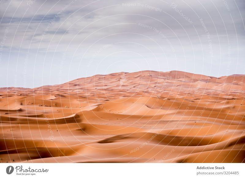 Sand dunes in Sahara desert Dunes Morocco Landscape Desert Nature Africa Tourism Vacation & Travel Orange Background picture Exterior shot arabic Dry Egypt