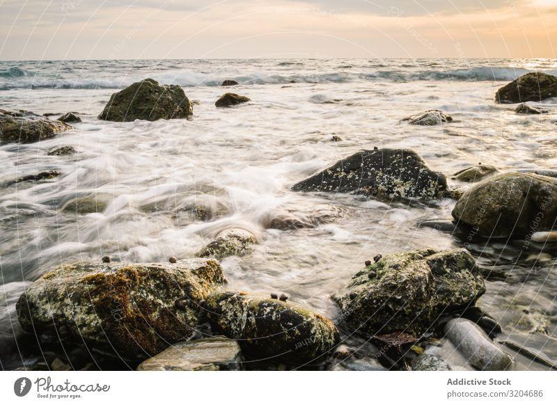 Stony seashore and waves at beautiful sunset Coast Wave Sunset Beautiful Picturesque Wet Calm seaside Sky Ocean Water Beach Nature Landscape seascape Serene
