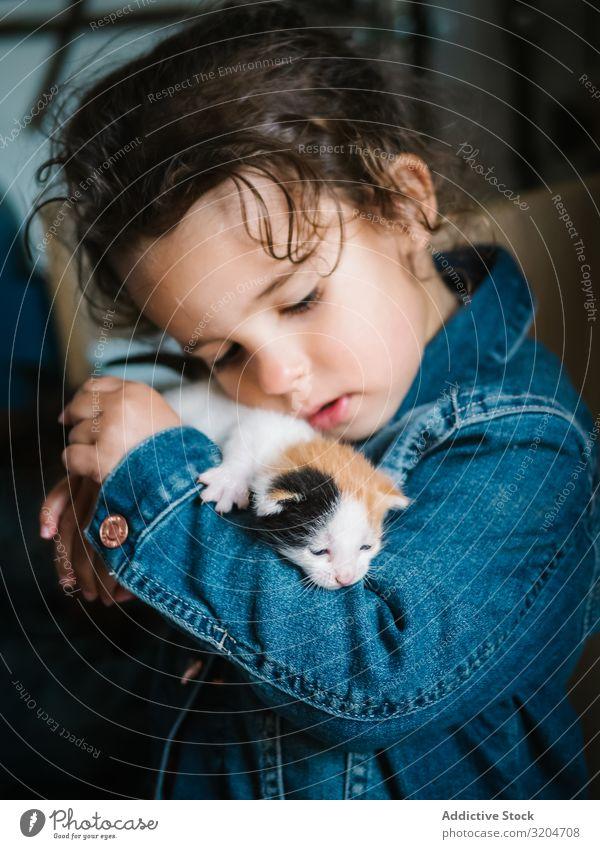 Cute little girl holding tenderly kitten Girl Kitten Hold Toddler Delightful Flat (apartment) Cat Pet Small Infancy Child Considerate Love Affectionate Innocent