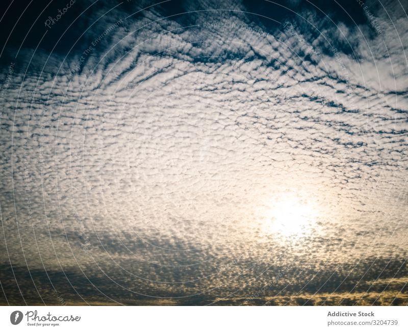 Picturesque cloudy sky at sundown Sky Sunset Clouds Illuminate Beautiful Calm Cirrus Background picture Sunlight Landscape Summer Vantage point Twilight Nature