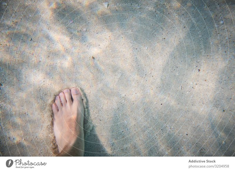 Bare foot of man on sea depth Barefoot Sand Beach Summer Feet Vacation & Travel Relaxation Nature Sunbeam Coast Human being Ocean Tropical Legs seaside