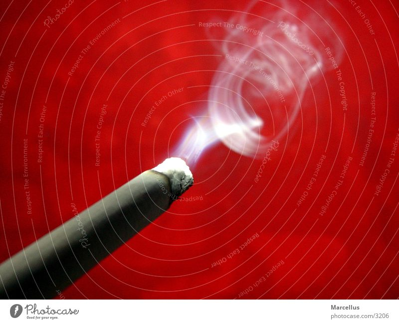 Calm Smoke Cigarette Photographic technology