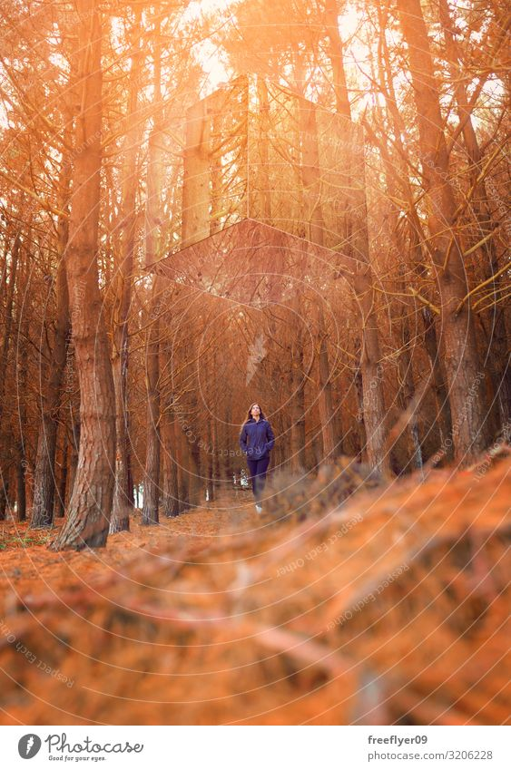 Woman and mysterious mirror cube Human being Vacation & Travel Nature Youth (Young adults) Young woman Landscape Red Sun Tree Loneliness Leaf Forest Winter