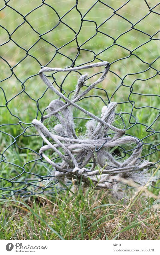 Old string, rope wrapped in the broken fence, wire mesh fence to patch a hole, in front of a meadow in nature, on a cattle pasture. Fence Meadow Grass Green