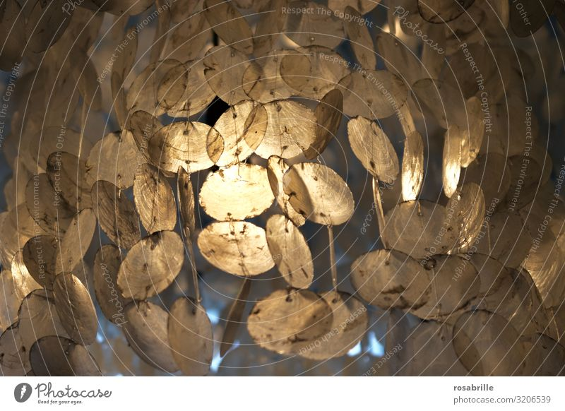 Light play suspended mother of pearl circles   Trash 2020 Mother-of-pearl slices Wind chime Visual spectacle Lighting Glimmer shape structures Abstract