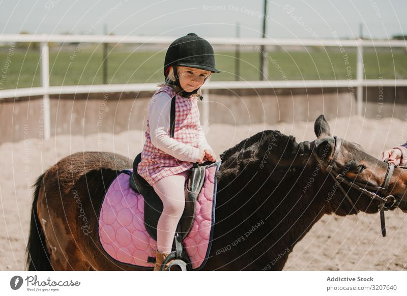 Little girl riding horse on hippodrome sport ride racetrack equestrian child practice childhood learn kid adorable little jockey rural happy animal horseback