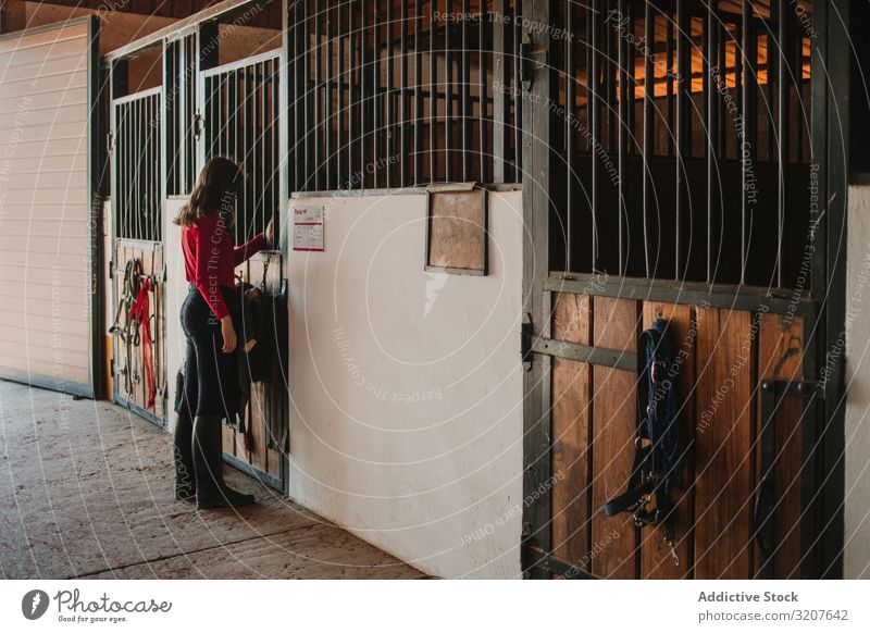 Woman standing in horse stable woman stall occupation ranch equestrian care caress professional jokey rural countryside work equine farm summer entrance gate