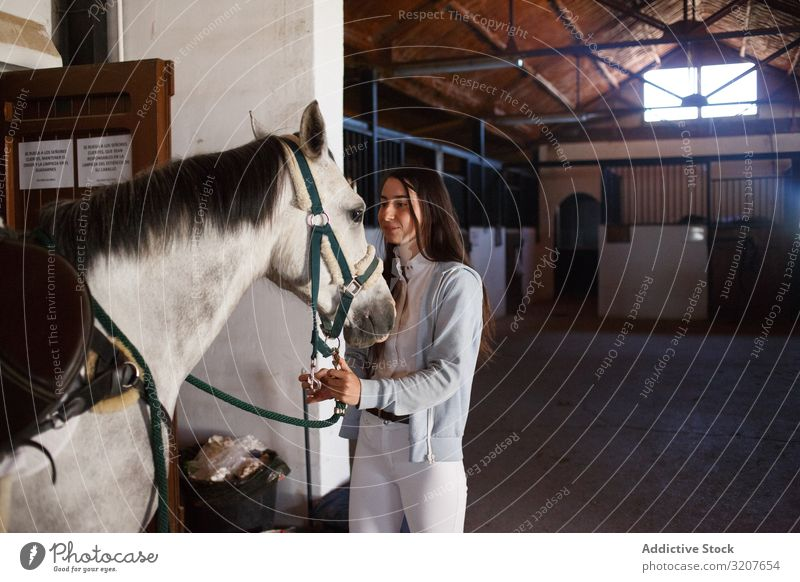 Girl with adorable pony in hat teenage girl stable animal child embrace friend pet childhood countryside stroke little cute charming kid farm happy lovely brown