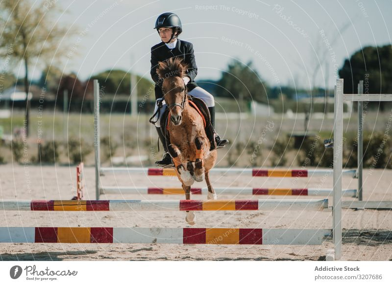 Teen girl riding horse and jumping over bars woman racetrack ride sport animal equestrian training active leap horseback equine purebred event motion barrier