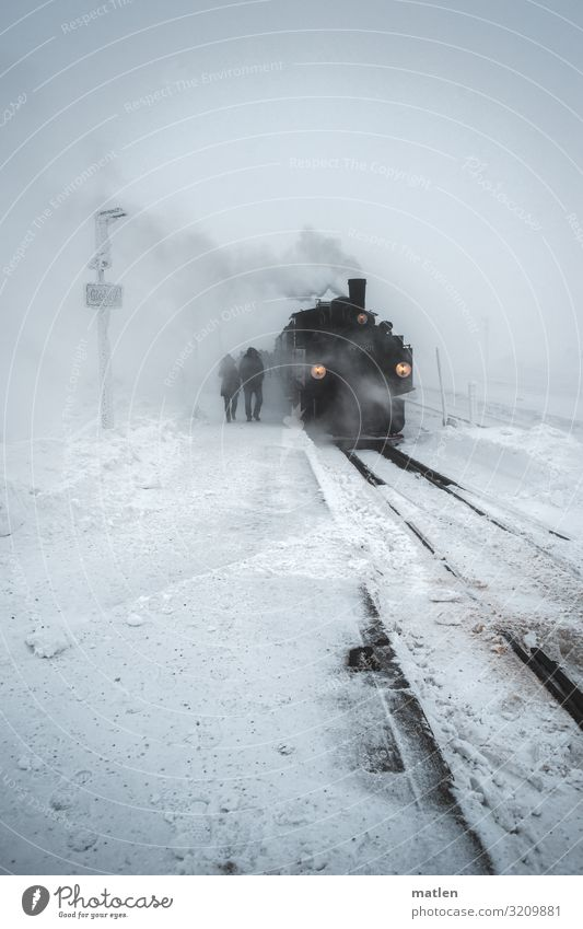 White Landscape Black Cold Snow Gray Snowfall Transport Ice Wind Railroad Frost Railroad tracks Traffic infrastructure Passenger traffic Bad weather