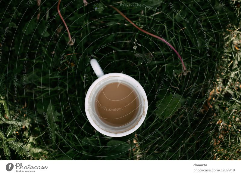 coffee's summer Nature Summer Plant Joy Lifestyle Style Grass Garden Freedom Moody Living or residing Leisure and hobbies Wild Happiness Adventure