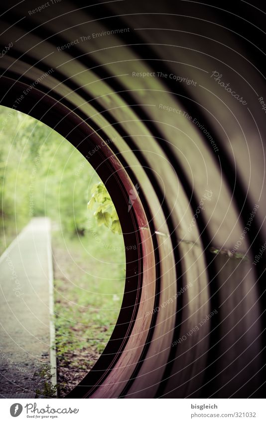 tunnel vision Berlin Federal eagle Europe Park Tunnel Tunnel vision Lanes & trails Metal Brown Gray Green Hope Insecure Future Nature Park South Area