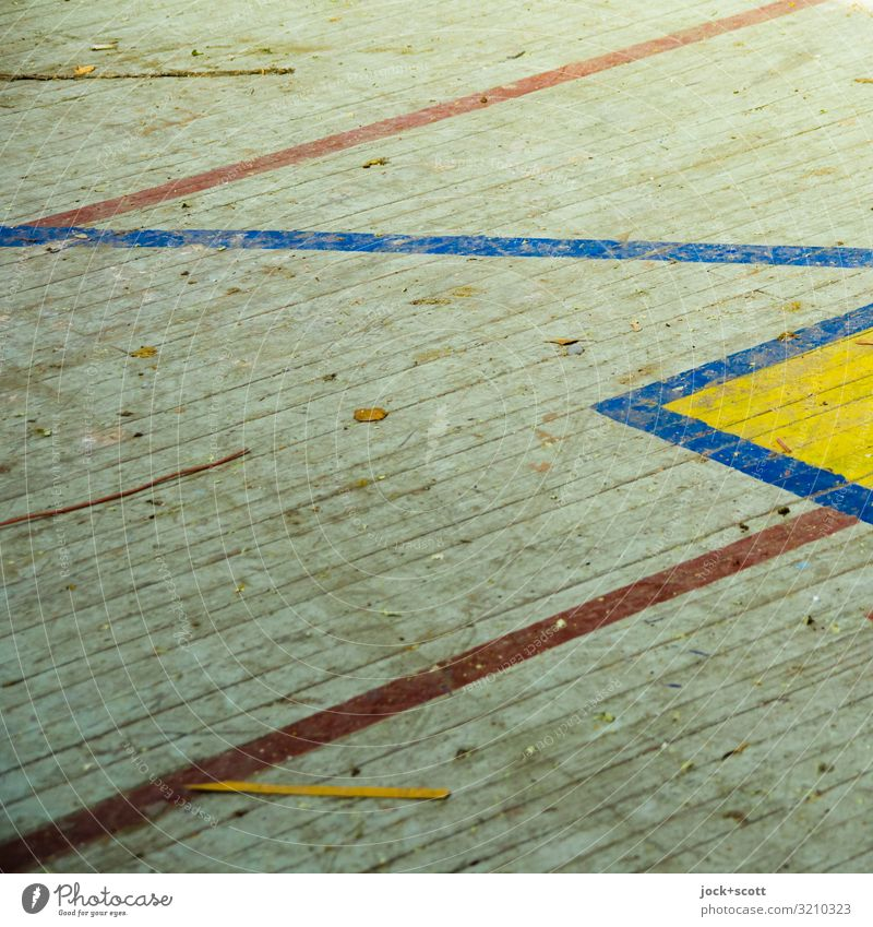 zick zack zick Sporting Complex lost places Brandenburg Gymnasium Wooden floor Line Surface structure Border Old Dirty Firm Retro Under Moody Disciplined