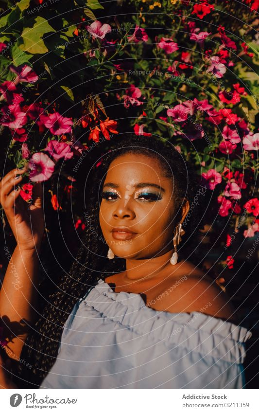 Joyful trendy African American woman standing beside blossomed tree joyful stylish sunshine modern content attractive vibrant sunset african american black