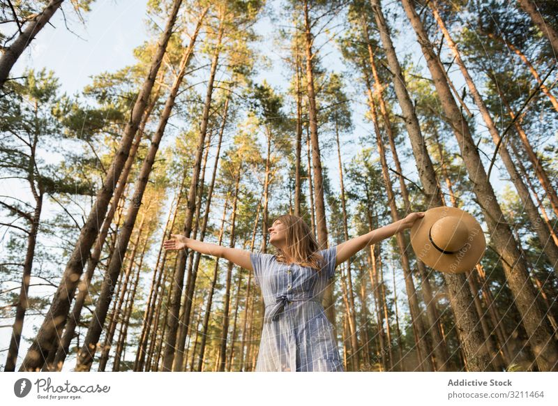 Smiling young woman relaxing among pine trees beam woods carefree sunlight forest happy nature casual sensual golden adventure smiling straw hat blond dress