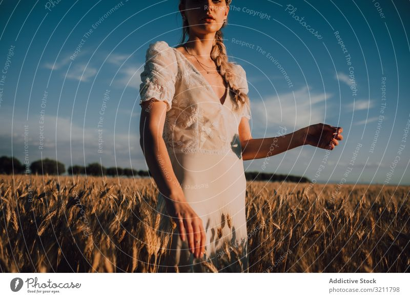 Woman in middle of wheat field woman boho lace beautiful style tender bride sensual natural summer romantic wedding blonde straw hippie lifestyle nature female