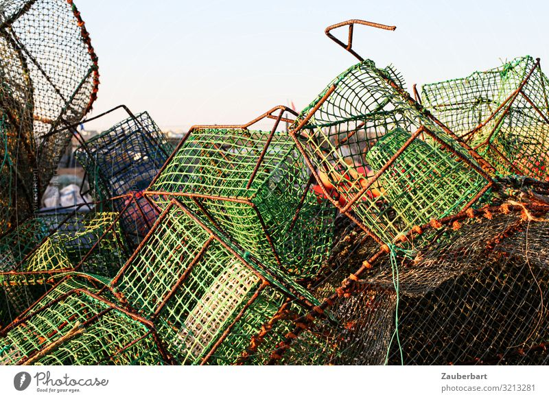 Green baskets for fishing Fishery Fisherman Fishing net Basket Mesh grid Box Work and employment Catch Sharp-edged Stress Chaos Untidy Colour photo