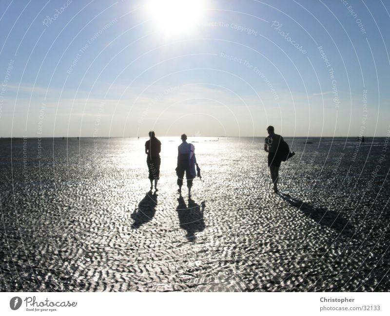 towards the sun Walk along the tideland Horizon Mud flats Sun Shadow Silhouette