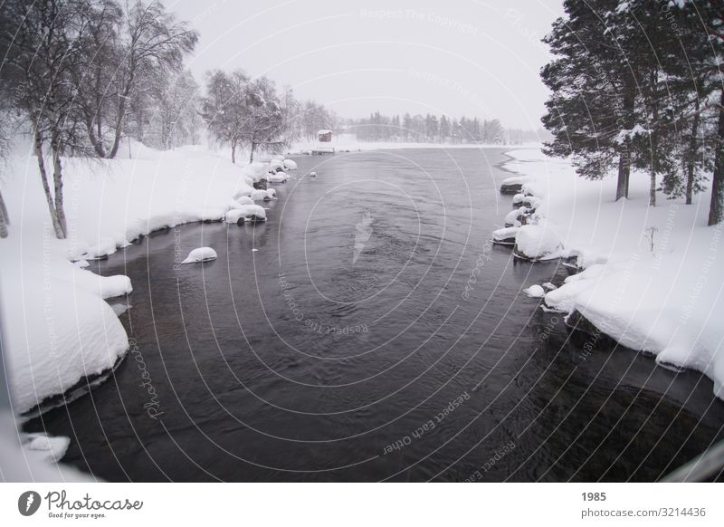 River in winter landscape Vacation & Travel Trip Freedom Sightseeing Winter Snow Winter vacation Nature Landscape Plant Water Sky Fog Ice Frost Snowfall Tree