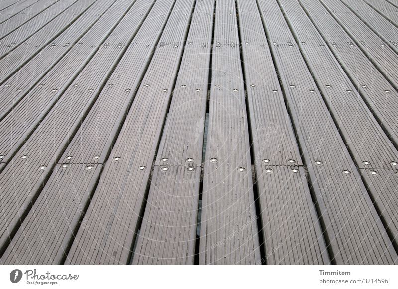 On the pier Vacation & Travel Tourist Attraction Sea bridge Wood Metal Line Esthetic Simple Brown Gray Emotions Footbridge Floorboards Baltic Sea Places Empty