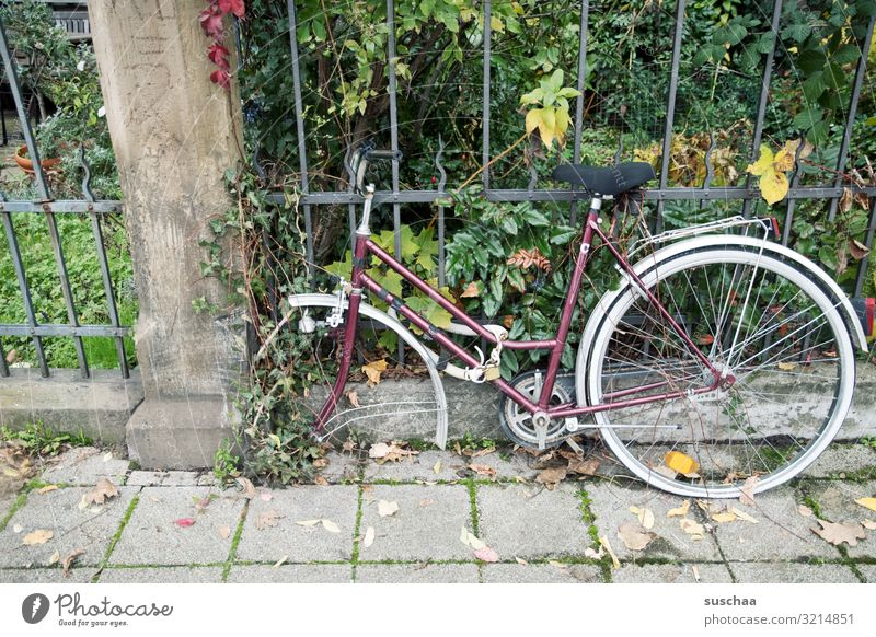 rate theft Bicycle Close Safety Insecure Purloin dismantle Town City life Old Forget Wheel Miss little garden Garden fence bicycle lock Defective Evil Thief