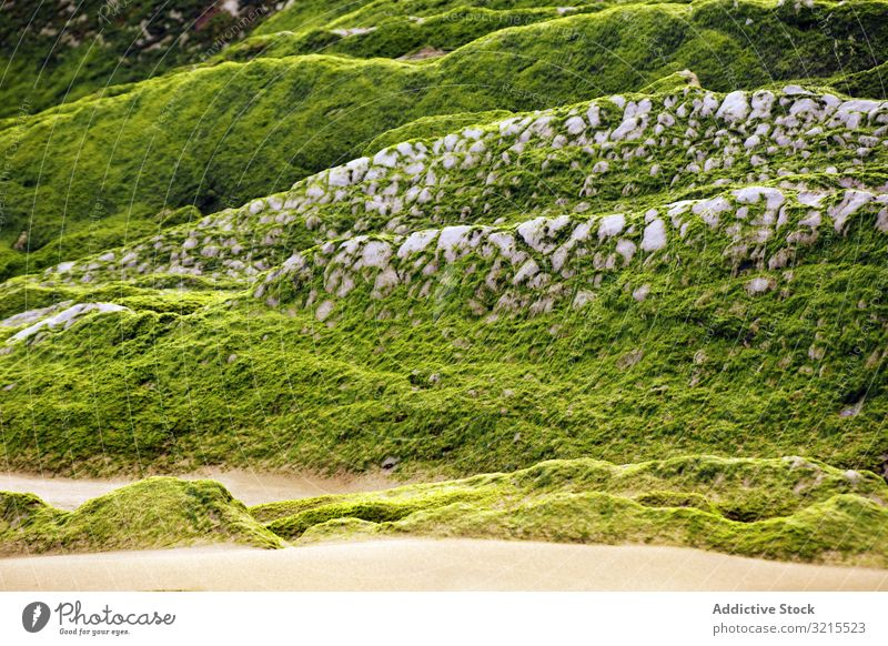 Stony hill covered with moss hillside stone surface countryside green growth wet grass rough rock formation geology nature harmony idyllic picturesque slope