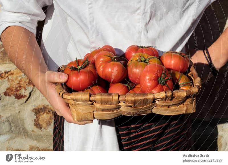 Shiny ripe tomatoes in brown wicker basket hands vegetarian food shiny organic vegetable raw fresh natural freshness whole bright juicy harvest delicious