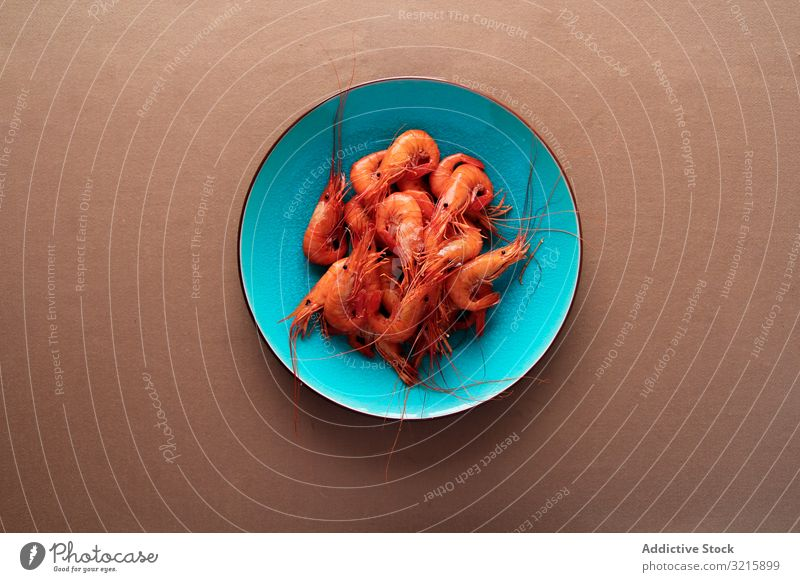 Red tasty shrimps in bright blue plate prawn crustacean delicatessen seafood ingredient fresh sauce appetizing dinner luxury natural snack omega freshness