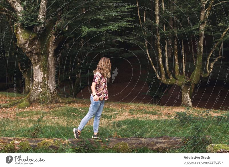 Young woman balancing on log in park forest walking majestic dark old mystic young tourist nature landscape vacation lifestyle female activity weekend dreaming