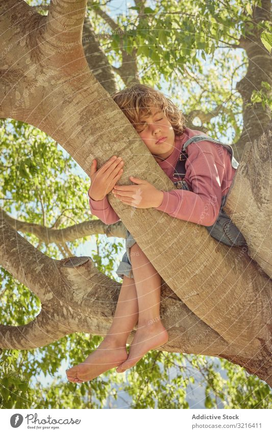 Barefoot boy sitting on tree hugging trunk barefoot joyful standing happy kid little cheerful childhood fun casual nature summer funny active freedom laughing