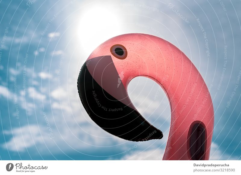 inflatable pink pelican mattress on pink sea beach relax nature beautiful sunny paradise salt halobacteria Spain water summer outdoors pretty copy space