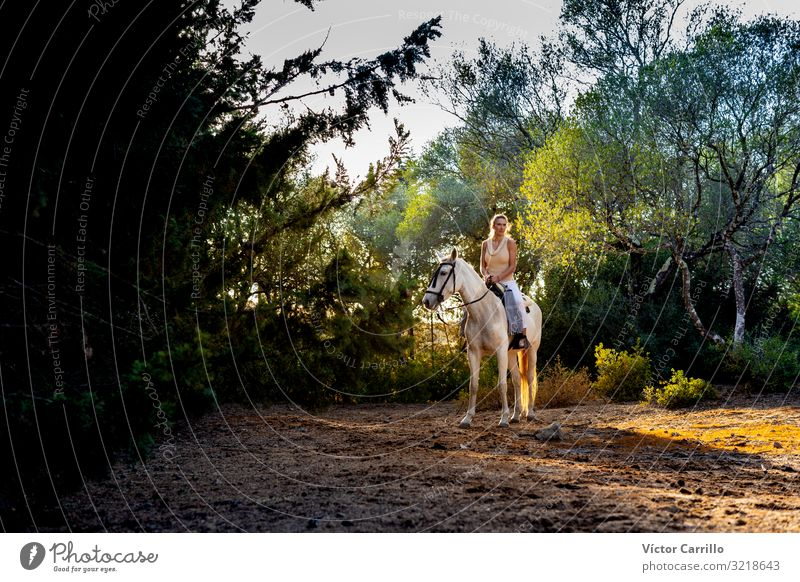A attractive blonde woman riding a horse Woman Human being Nature Man Summer Beautiful Green White Tree Flower Relaxation Calm Joy Forest Lifestyle Adults