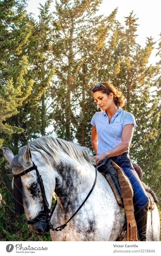 An attractive woman riding a horse in a natural Woman Human being Nature Man Summer Beautiful Green White Tree Flower Relaxation Calm Joy Forest Lifestyle