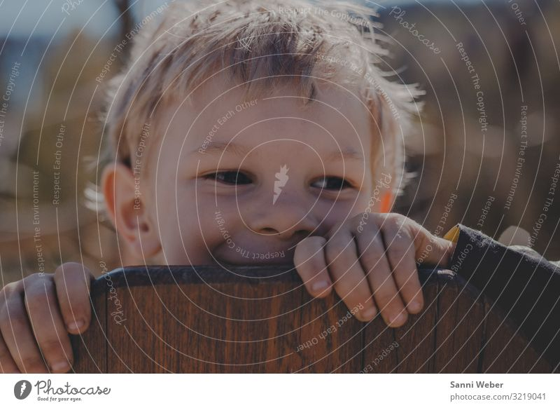 Hiding 1 Globe Adventure Child Boy (child) Playground Summer Hide Joy Laughter Blonde Colour photo Subdued colour Exterior shot Day Light Shadow