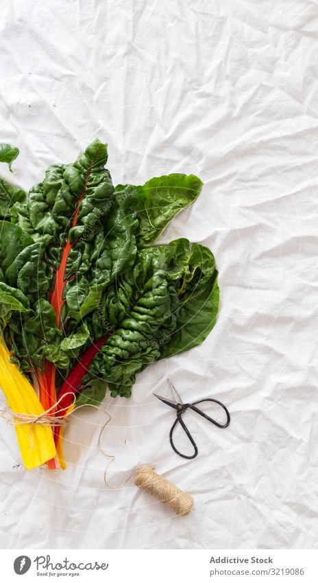 Bunch of chard on white fabric bunch fresh scissors thread cloth wrinkled vegetarian raw healthy nutrition food organic natural vegan ingredient vitamin cotton