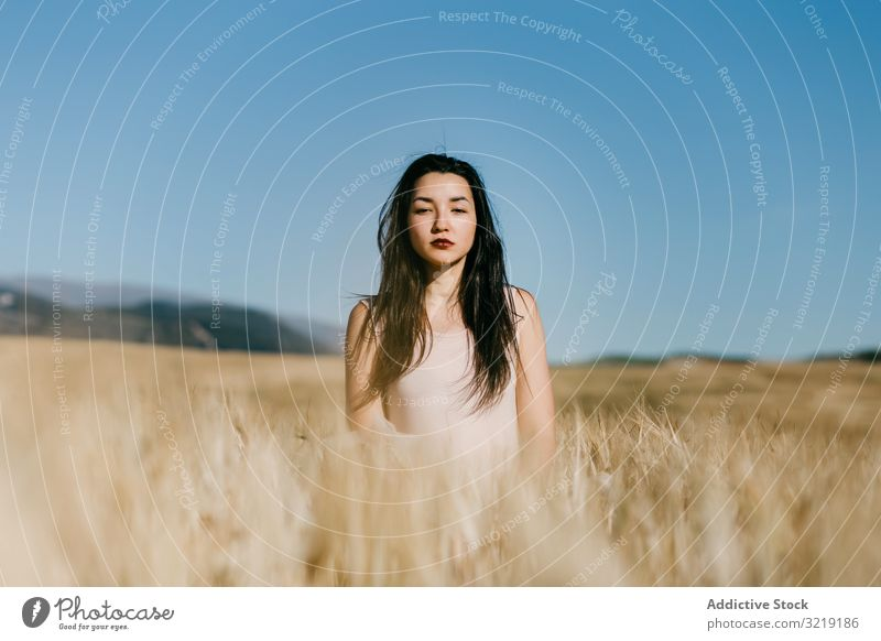 Asian lady standing in field woman windy nature asian weather sensual young summer freedom female meadow grass countryside harmony idyllic calm tranquil serene