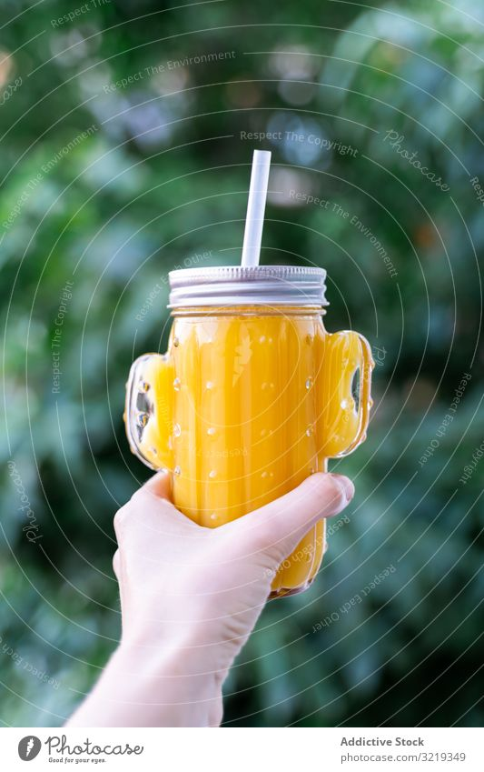 Cactus mason jar with fruit juice smoothie drink cactus detox healthy glassware vegetarian shape organic sweet diet raw natural fresh delicious beverage straw