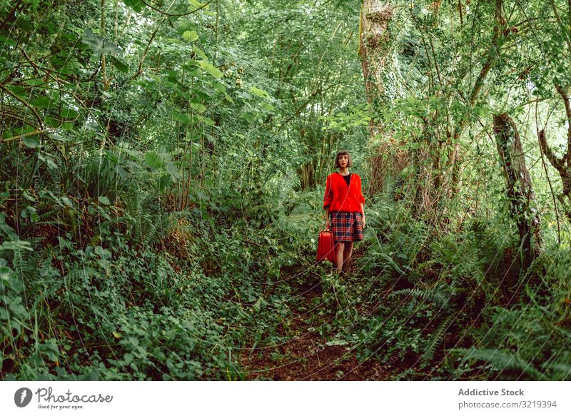 Woman in red with big red suitcase in forest woman travel stylish green female luggage nature beautiful bag piercing waiting freedom alone trip journey tree