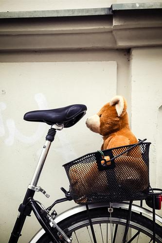 lover Leisure and hobbies Cycling tour Bicycle Transport Means of transport Toys Teddy bear Sit Wait Small Cute Brown Infancy Safety Bear Basket In transit