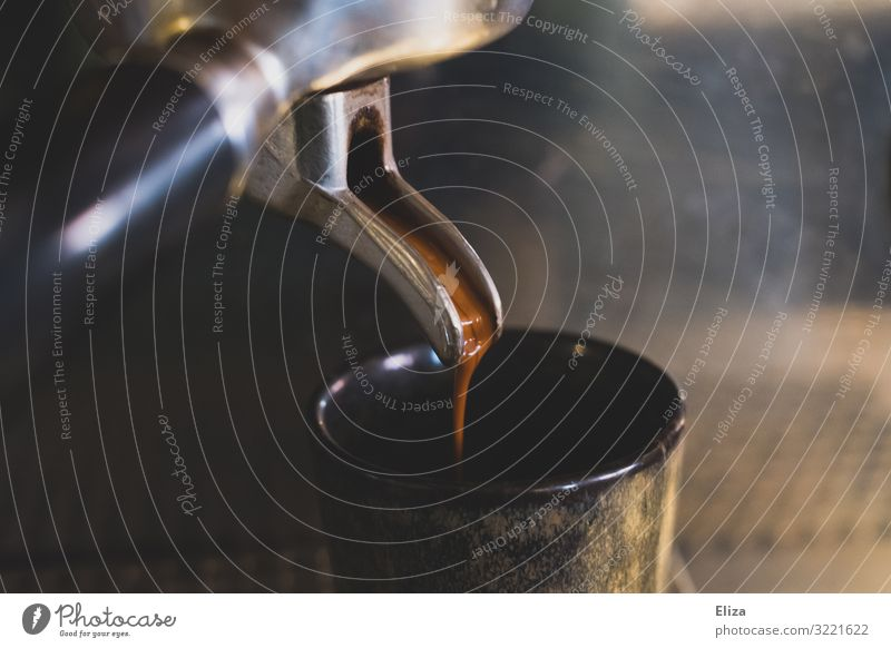 Preparation of an espresso with a sieve carrier machine. Coffee, café, gastronomy. Espresso To enjoy screen carrier machine Coffee maker Detail Close-up