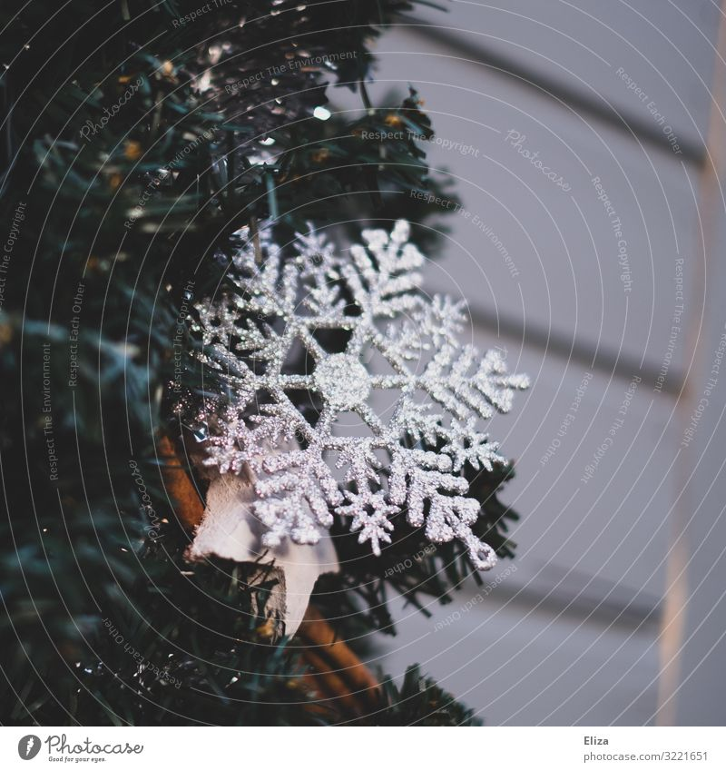 ice crystal Christmas & Advent Kitsch Winter Christmas decoration Christmas Fair Ice crystal Glittering Facade Living or residing Wall (building) Cinnamon