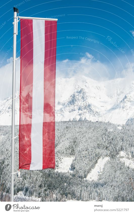 fly the flag Vacation & Travel Tourism Far-off places Winter Winter vacation Mountain Beautiful weather Ice Frost Snow Alps Peak Snowcapped peak Flag Austria