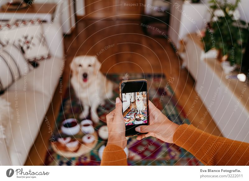 young caucasian woman taking a picture of her golden retriever dog with mobile phone. Home, indoors Woman Dog Illustration Cellphone PDA Technology Take