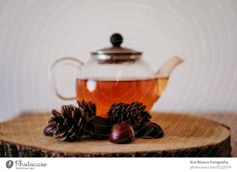 teapot with tea on a wood table. pineapples and chestnuts besides. Morning, daytime. Autumn season Teapot Chestnut Pineapple Brown Interior shot Deserted Home
