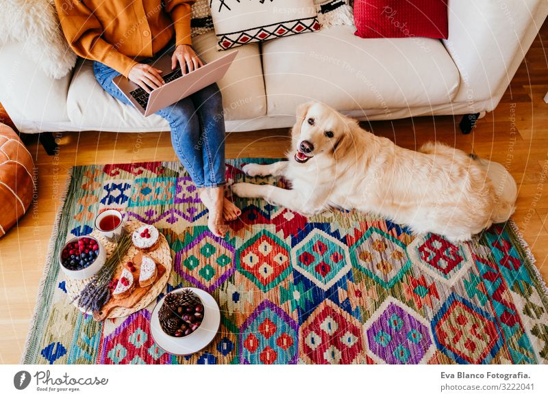 young woman working on laptop at home. cute golden retriever dog besides. healthy breakfast time. technology and lifestyle indoors Notebook Technology