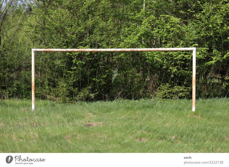 Stadium at the old forestery Playing Sports Fitness Sports Training Ball sports Goalkeeper Stands Sporting event Soccer Sporting Complex Football pitch Plant