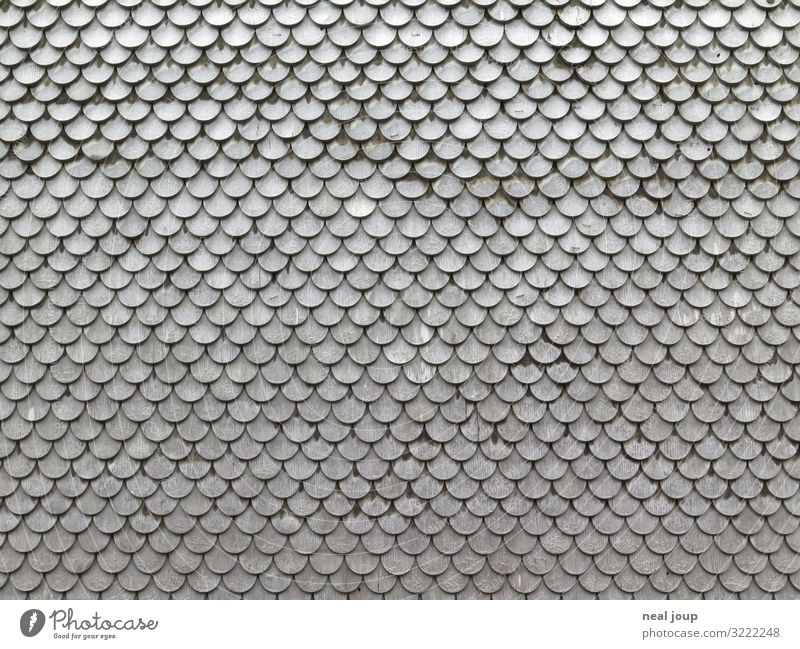 Scales Scales Scales Vacation & Travel Tourism Austria Barn Wall (barrier) Wall (building) Roofing tile Wood Old Esthetic Uniqueness Sustainability Cliche Gray