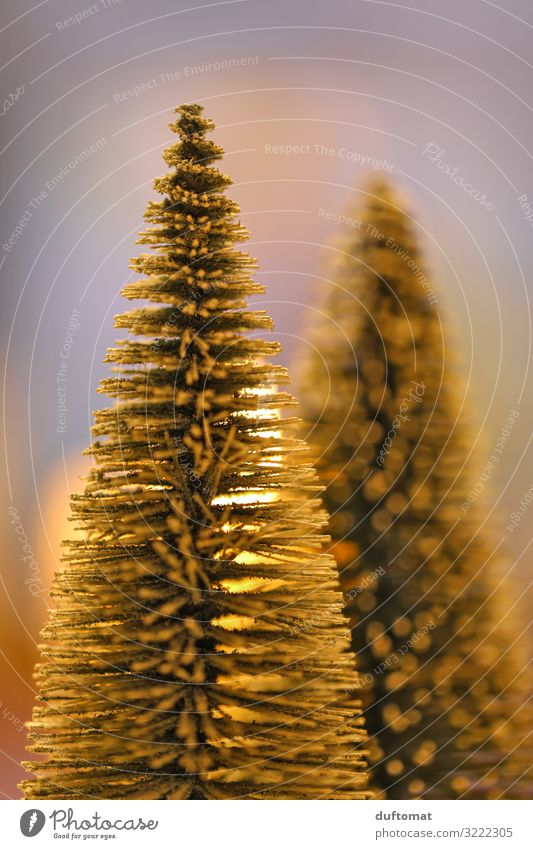 Christmas & Advent Tree Winter Warmth Feasts & Celebrations Living or residing Decoration Ice Elegant Candle Tradition Frost Kitsch Trade Anticipation