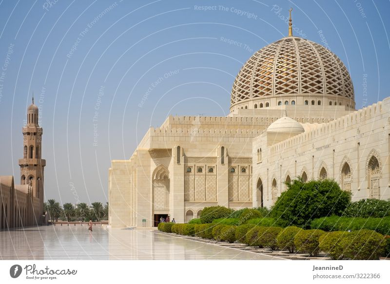 Sultan Qaboos Mosque in Muscat Vacation & Travel Landmark Work of art Summer Oman Near and Middle East Palace Places Tourist Attraction Exceptional Gigantic